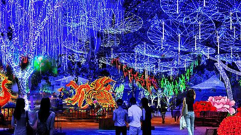 Mk Limo Kingwood Christmas Light Limo Tours Holiday